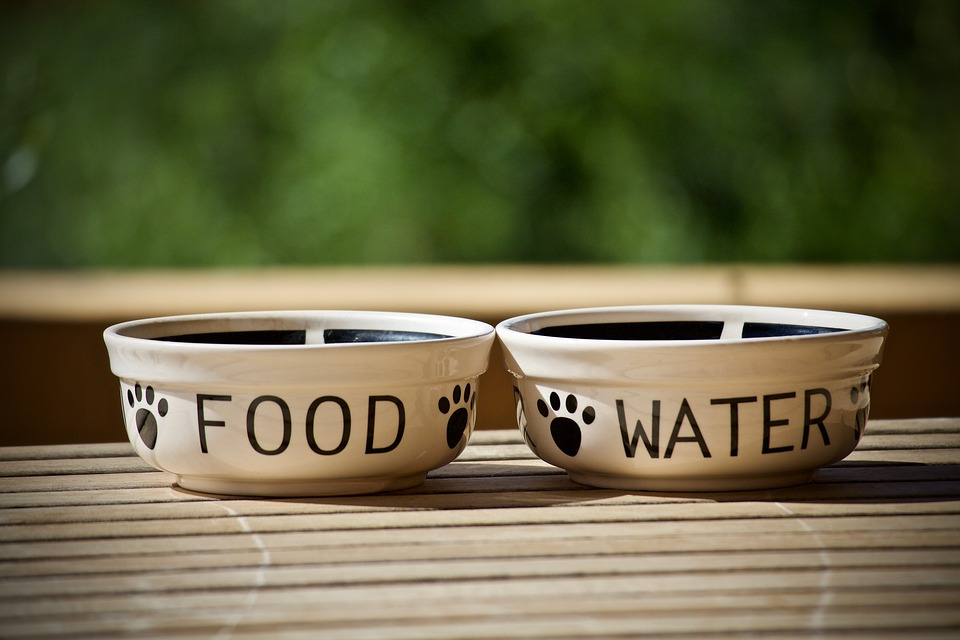 CHI utilizza Pet Bowl Diet?